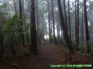 66-160徳島県三好市