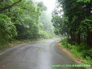 66-169徳島県三好市