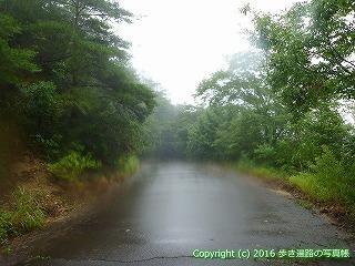 66-170徳島県三好市