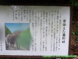66-171徳島県三好市