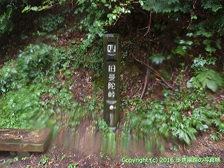 66-172徳島県三好市