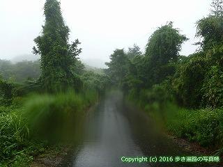66-174徳島県三好市
