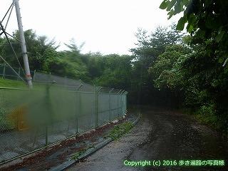 66-176徳島県三好市