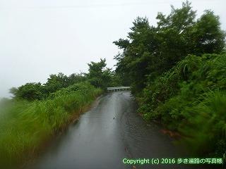 66-179徳島県三好市