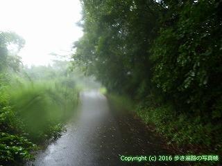 66-180徳島県三好市