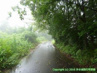 66-181徳島県三好市
