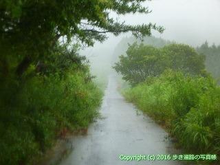 66-184徳島県三好市