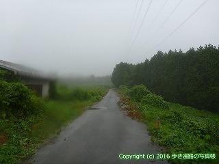 66-185徳島県三好市