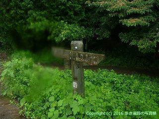 66-187徳島県三好市