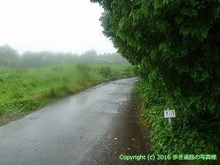 66-190徳島県三好市