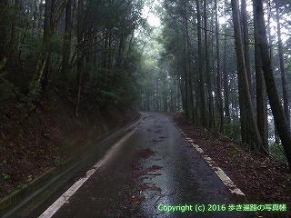66-195徳島県三好市