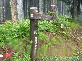 66-202徳島県三好市