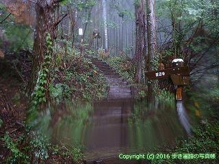 66-205徳島県三好市