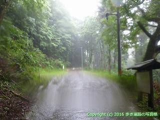 66-206徳島県三好市