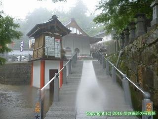 66-210徳島県三好市
