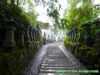 66-212徳島県三好市