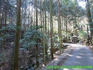 6601-005愛媛県四国中央市