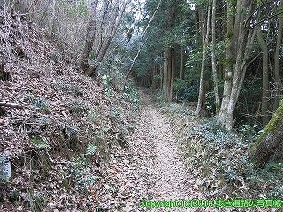 6601-168徳島県三好市