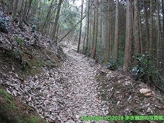 6601-171徳島県三好市