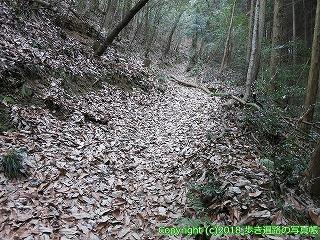 6601-172徳島県三好市