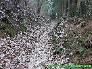 6601-173徳島県三好市