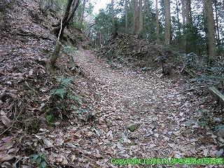 6601-176徳島県三好市