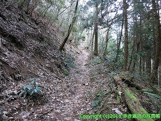 6601-178徳島県三好市
