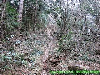 6601-181徳島県三好市