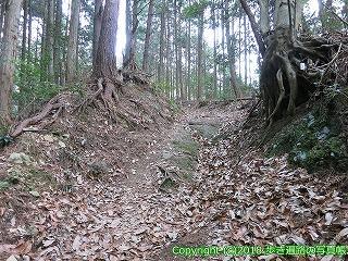 6601-182徳島県三好市