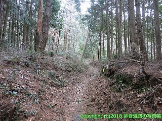 6601-183徳島県三好市