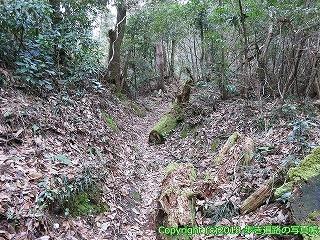 6601-185徳島県三好市