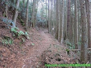6601-193徳島県三好市
