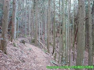 6601-203徳島県三好市