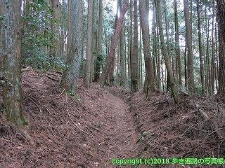 6601-205徳島県三好市