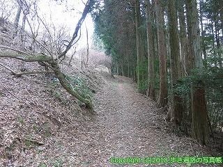 6601-207徳島県三好市