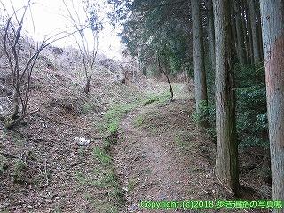 6601-208徳島県三好市