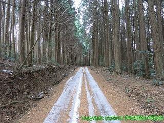 6601-217徳島県三好市