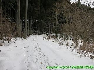 6601-236徳島県三好市