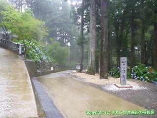 67-002徳島県三好市