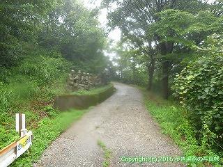 67-005徳島県三好市