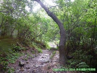 67-036香川県観音寺市