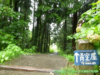 67-038香川県観音寺市