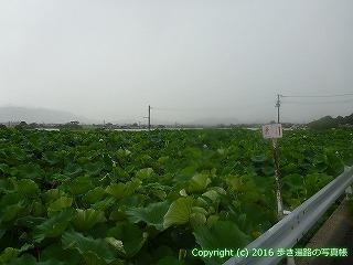 67-077香川県観音寺市