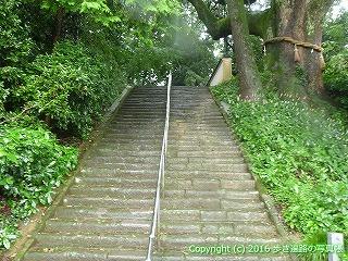 67-090香川県三豊市