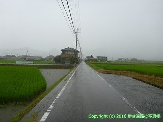 71-056香川県三豊市