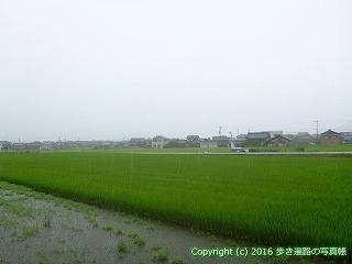 71-057香川県三豊市