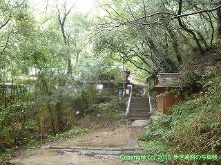 71-086香川県三豊市