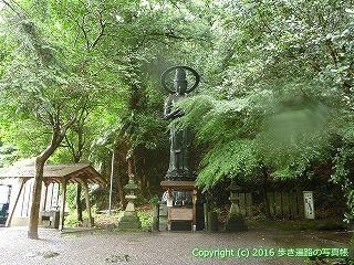 71-093香川県三豊市
