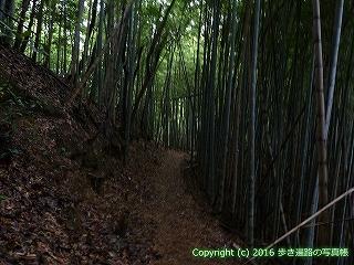73-009香川県三豊市