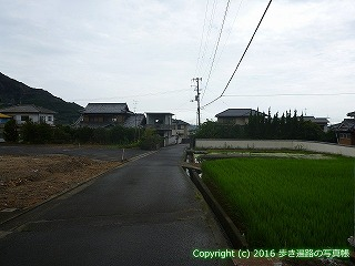 74-003香川県善通寺市